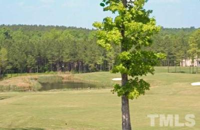 Residential Lots & Land For Sale: 800 Golfers View