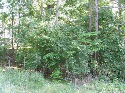 Pittsboro Commercial Lots & Land For Sale: Thompson Street