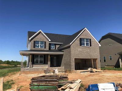 Mebane Single Family Home Contingent: 346 Brinkley Circle