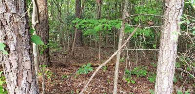 Franklin County Residential Lots & Land For Sale: 176 Sequoia Drive