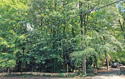 Chapel Hill Residential Lots & Land For Sale: 810 E Franklin Street