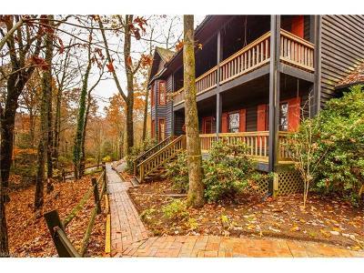 Transylvania County Single Family Home For Sale: 212 Still Branch Road