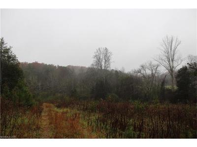 Mill Spring Residential Lots & Land For Sale: Big Level Road