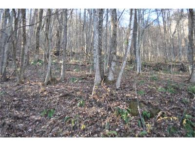 Pisgah Forest Residential Lots & Land For Sale: 00 Mountainside Drive NW #29