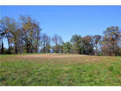 Asheville NC Residential Lots & Land Closed: $844,375
