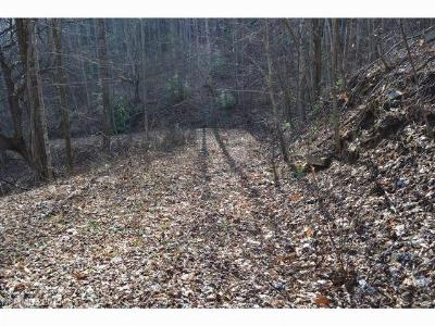 Bat Cave, Gerton Residential Lots & Land For Sale: Lot 5 Woody Drive #5