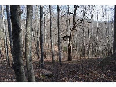 Bat Cave, Gerton Residential Lots & Land For Sale: Lot 4 Woody Drive #4