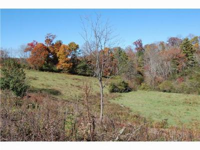 Weaverville NC Residential Lots & Land For Sale: $5,000,000