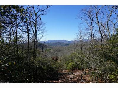 Pisgah Forest Residential Lots & Land For Sale: Lot 13 Laureldale #13