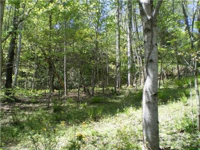 Pisgah Forest Residential Lots & Land For Sale: Lot 7 Pisgah Forest Drive