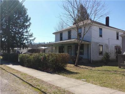 Transylvania County Single Family Home For Sale: 328 Main Street