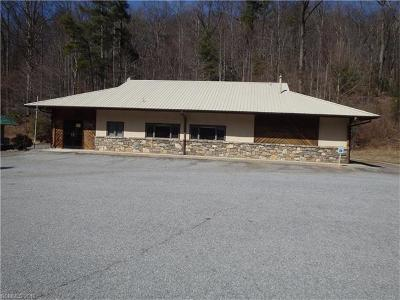 Lake Lure Commercial For Sale: 2556 Memorial Highway