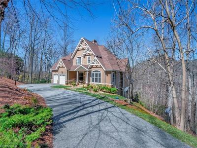 Asheville Single Family Home For Sale: 9 Greenmont Drive