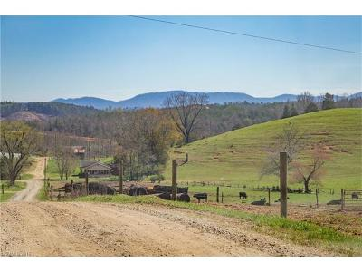 Morganton NC Residential Lots & Land For Sale: $3,500,000