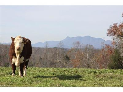 Rutherfordton Residential Lots & Land For Sale: 0000 Tom Camp Road #86 acres
