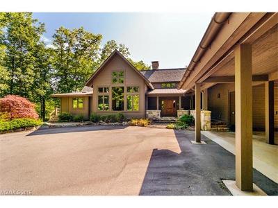 Transylvania County Single Family Home For Sale: 66 Cardinal Drive #29
