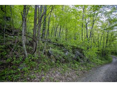 Bat Cave, Gerton Residential Lots & Land For Sale: Lot9&10 Killdevil Hill