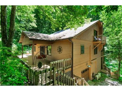 Asheville Single Family Home For Sale: 500 Lynn Cove Road