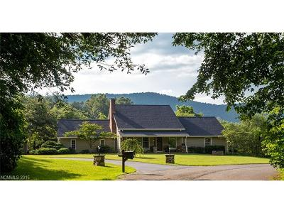 Mills River NC Single Family Home Closed: $380,000