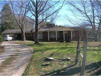 Hendersonville Single Family Home For Sale: 164 Old Holbert Road