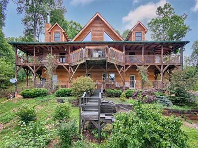 Weaverville Single Family Home For Sale: 20 Ball Hollow Road