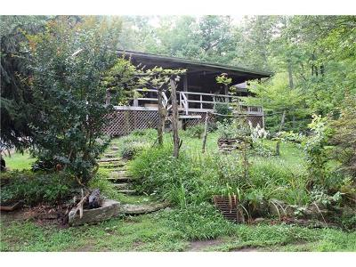 Transylvania County Single Family Home For Sale: 1009 Morgan Mountain Road