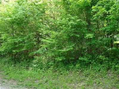 Residential Lots & Land For Sale: 201 Weaver Lane