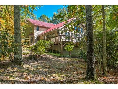 Brevard Single Family Home For Sale: 49 View Road W