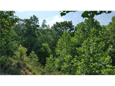 Pisgah Forest Residential Lots & Land For Sale: 13 Parkway View Drive #13