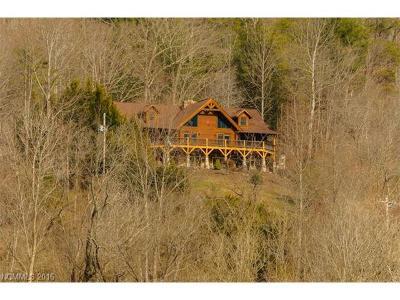Marshall Single Family Home For Sale: 1823 Barnard Road