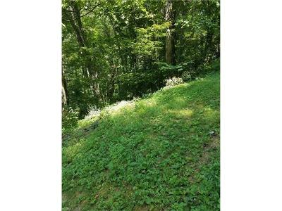 Residential Lots & Land For Sale: 57 Dream Mountain Boulevard #57