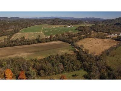Etowah NC Residential Lots & Land Under Contract-Show: $4,500,000