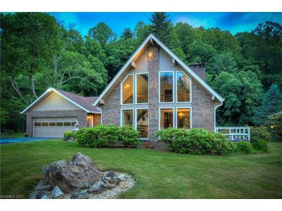 Weaverville Single Family Home For Sale: 259 Ox Creek Road