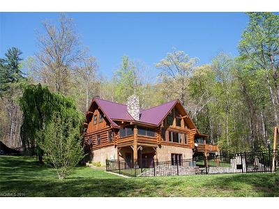 Transylvania County Single Family Home For Sale: 388/288/228 Hard To Find Drive