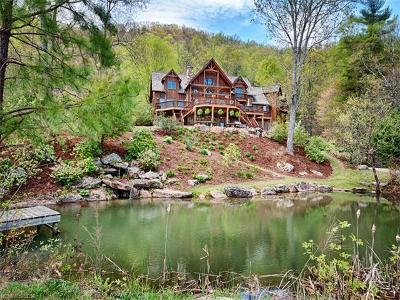 Asheville Single Family Home For Sale: 99 Bear Woods Trail