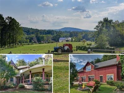 Hendersonville Single Family Home For Sale: 3016 Locust Grove Road