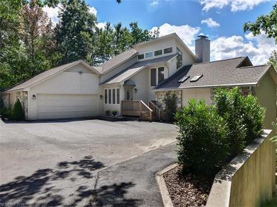 Mills River Single Family Home For Sale: 118 Honey Locust Drive
