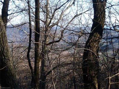 Residential Lots & Land For Sale: Lot # 21 Youngs Mountain Drive #21