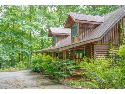Black Mountain Single Family Home For Sale: 29 Woodhaven Lane