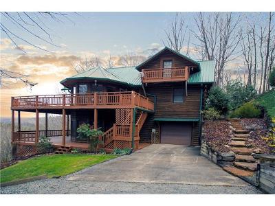Boyd, Little River, Penrose, Pisgah Forest Single Family Home For Sale: 36 Little Bear Lane