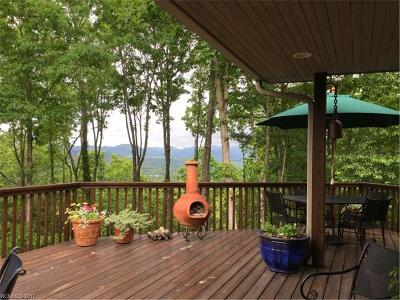Asheville Single Family Home For Sale: 180 Dry Ridge Road