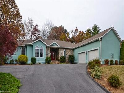 Weaverville Single Family Home For Sale: 22 Fairway View Drive