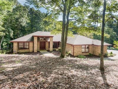Hendersonville Single Family Home For Sale: 121 Foothills Drive
