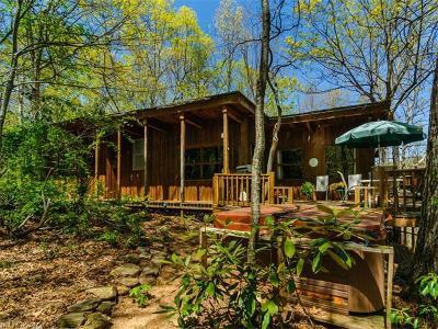 Saluda Single Family Home For Sale: 3790 Howard Gap Road