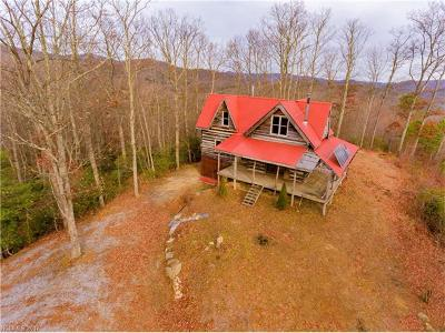 Lake Toxaway Single Family Home For Sale: 378 Oscar Galloway Road