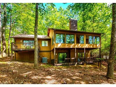 Brevard Single Family Home For Sale: 189 Sedi Lane