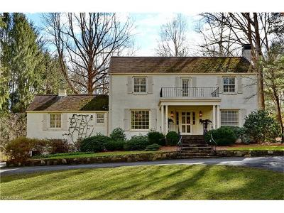 Asheville Single Family Home For Sale: 6 Busbee Road