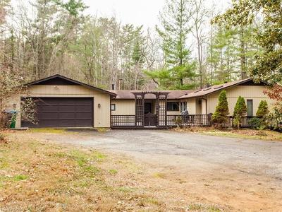 Asheville Single Family Home For Sale: 14 Leisure Mountain Road