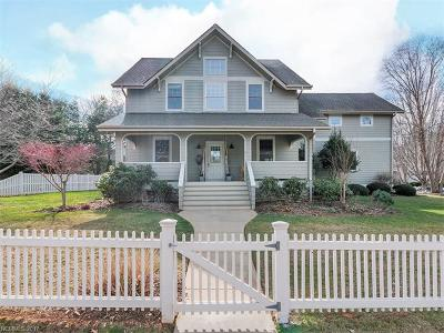 Asheville Single Family Home For Sale: 1066 Columbine Road