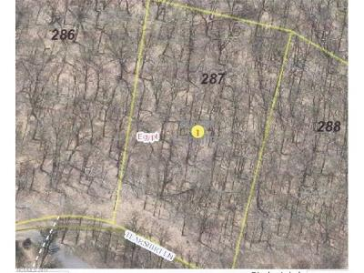 Residential Lots & Land For Sale: 287 Tearshirt Lane #287